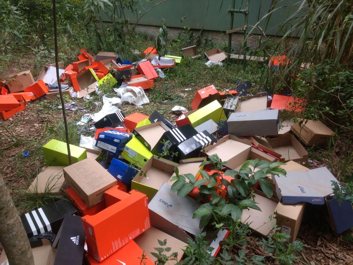 Mais de 100 pares de tênis são furtados