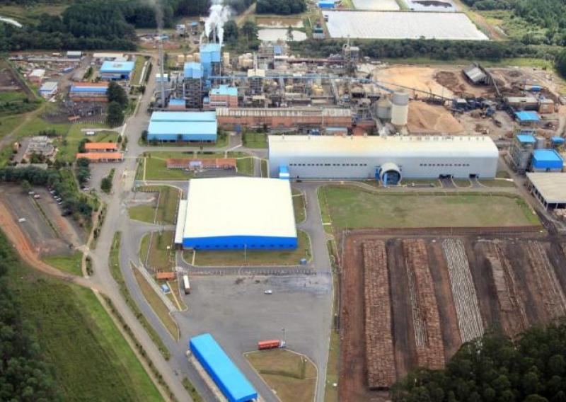 Multinacional americana anuncia investimento de R$ 1,28 bi em fábrica de papel em SC