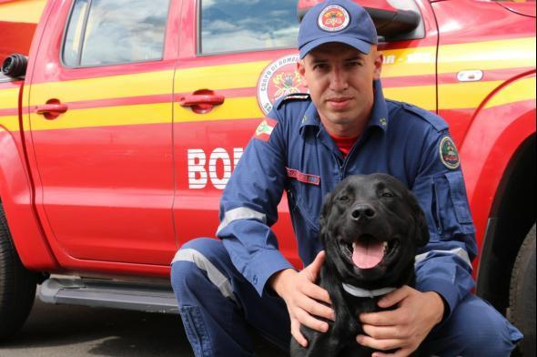 Cão-bombeiro morre em serviço em Içara