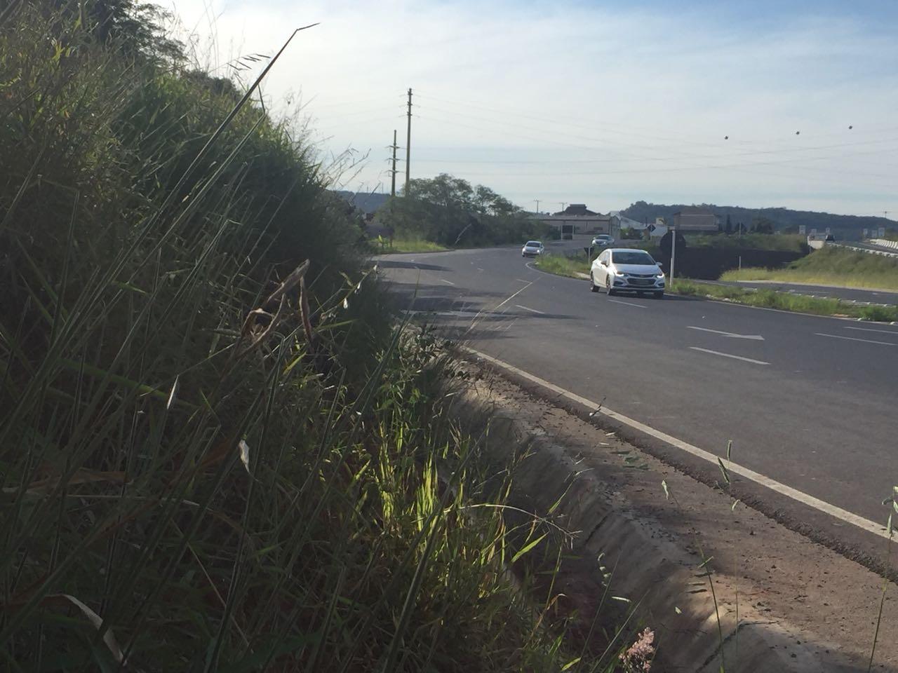 Bandidos jogam pedras em veículos que transitam na Via Rápida