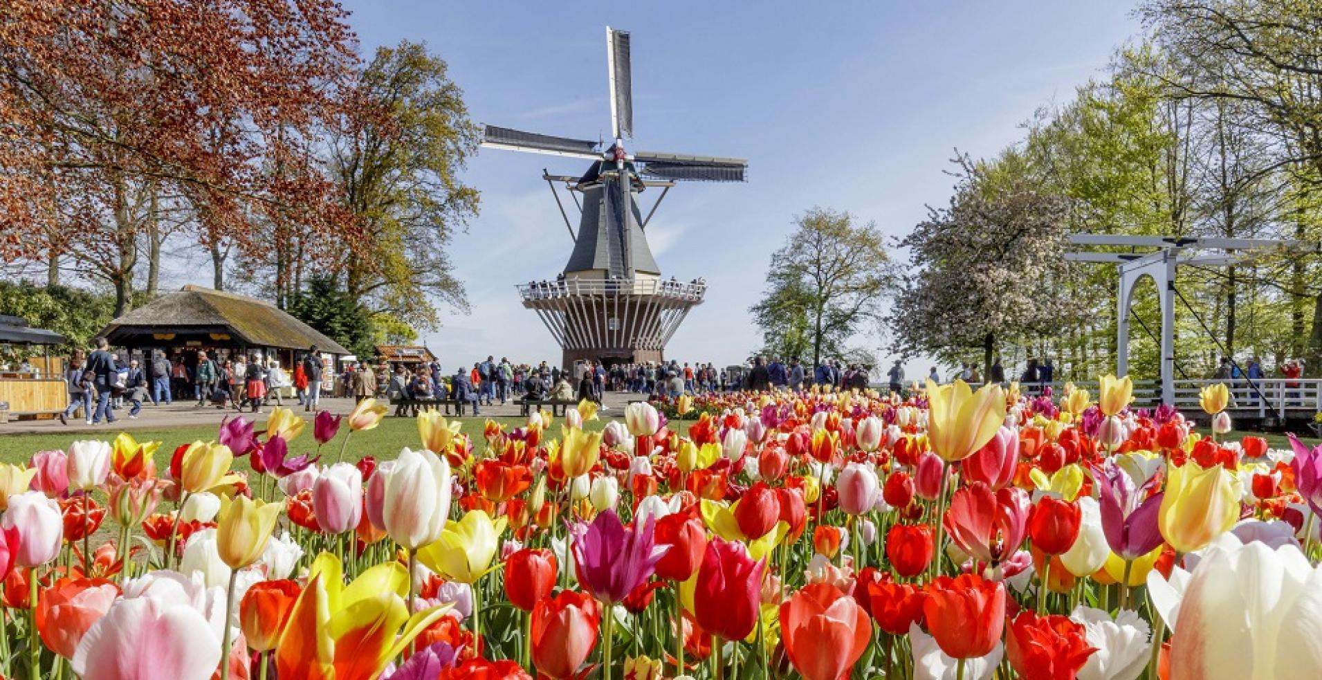 5 fatos curiosos sobre Amsterdam